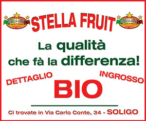 Stella_fruit_w