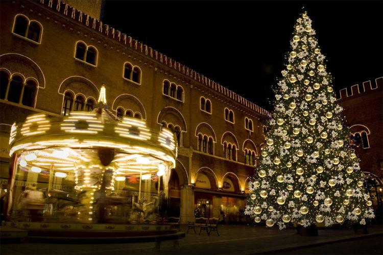Natale: 100 mila luci per l'albero in Piazza dei Signori